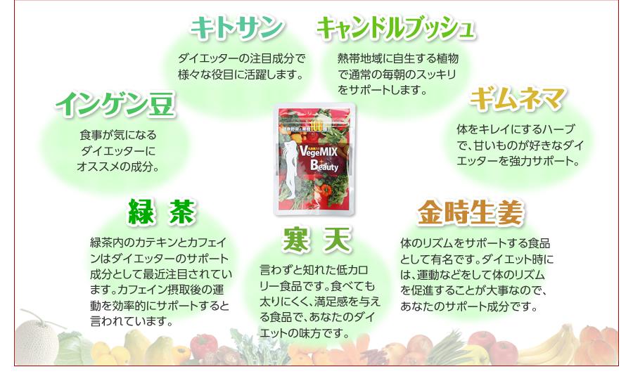 キトサン、キャンドルブッシュ、ギムネマ、金時生姜、寒天、緑茶、インゲン豆