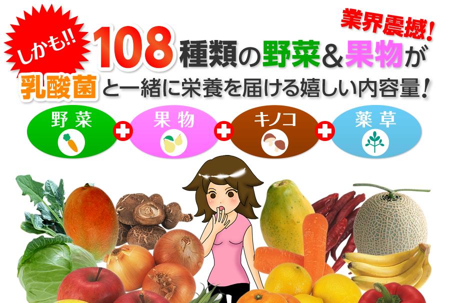 しかも!業界震撼!108種類の野菜&果物が乳酸菌と一緒に栄養を届ける嬉しい内容量!
